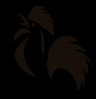Il Gallo Nero